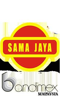 DSSB-BANDIX-Logo